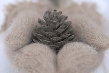::oh tanenbaum:: / Christmas decorations  / by Emily Kathryn Winship