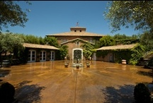 The Viansa Grounds / A glimpse of Italy in Sonoma County / by Viansa Sonoma