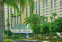 Rosen Plaza / by Rosen Hotels & Resorts Orlando, Florida