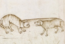 Cats / by the Walters Art Museum