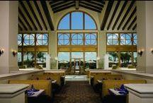 Cafe Osceola at Rosen Shingle Creek / by Rosen Hotels & Resorts Orlando, Florida