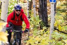 Hike and Bike / Did you know that Marquette County has many amazing hiking and biking trails that are nationally known. Check out some of our amazing hiking and biking trails. Contact us at 906-228-7749 or visit us at travelmarquettemichigan.com for your complimentary map of our many trails. / by Travel Marquette Michigan