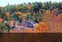 Fall Colors in Marquette / The Marquette area is home to dozens of gorgeous spots to view the fall colors! Start planning your fall color trip here. / by Travel Marquette Michigan