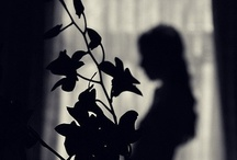 Silhouettes / by Julie Lindsey