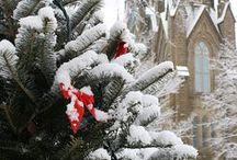 Winter Wedding / ♥ More wedding ideas … for a winter wedding ♥  / by BridesGroomsParents … plan a wedding...
