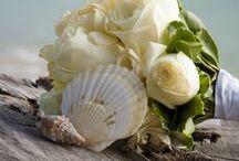 Green Beach Wedding / ♥ More wedding ideas … for a green beach wedding ♥  / by BridesGroomsParents … plan a wedding...