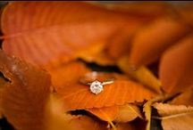 Fall  Wedding / ♥ More wedding ideas … for a fall or autumn wedding ♥  / by BridesGroomsParents … plan a wedding...
