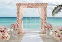 Beach Wedding / Because the Florida coast has never been more beautiful.