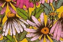 Floral Fills