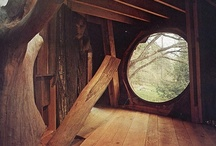 Treehouses, Forts & Hideaways