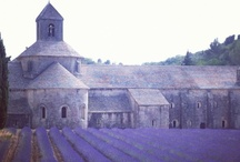 lavender / lilac / violet / The color is enveloping- don't you think?
