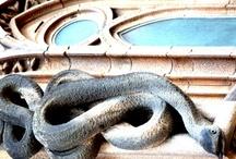 Architecture / Gaudí