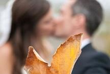 Wedding Photo Ideas / by Jessica Sacksteder