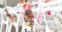 Wedding Chair Ideas and Decorations / Discover plenty of inspiration for decorating your wedding chairs. From chaivaris to camelot and banqueting to ghost. You'll find loads of wedding chair ideas and ways to decorate so you never have to cover them