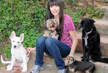"""DogVacay Hosts / DogVacay has 20,000+ top-rated, loving pet sitters, aka """"Hosts,"""" across North America! Check out some of their stories here. / by DogVacay"""