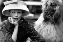 Vintage Dog Photos / by DogVacay