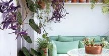 Bringing home outside.... / Bringing your home style to your outside space...whether it's a balcony, patio or jungle.