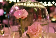 Dream Wedding Ideas / Possibilities for one day...