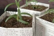 DIY Home & Garden / Tips and tricks for greener home environments!  / by One Green Planet