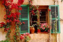 Favorite Places & Spaces / by Ingrid Jackovitch