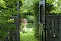 Yard and Gardens / by Erin Sievert