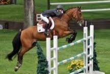 Horsing Around  / I ride horses