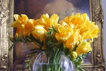 Floral Details/Compositions / Floral compositions / by Carmela Romano