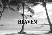 Trip to heaven