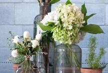 Floral arrangements / by andie jay