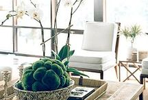 Bring The Outdoors In / Bring the outdoors in with nature inspired home accents.