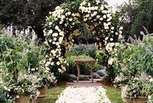 Ideas:Cascading Blooms