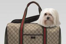 Posh pet bags / Purse, bag, soft crates for pets / by andie jay