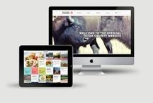 Website Design Inspiration / by Gabrielle Cosco