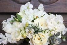 Flowers II / by Jennifer Wendell