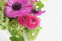 Bloemen in huis / Prachtige bloemen. In een boeket of andere manier gestyled