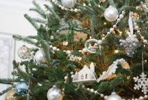 All things Christmas/ Cookies / by Season Ibbs-Rice