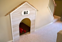 Pet Friendly Home / by Julie Scalet