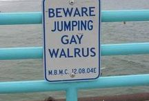 Funny and Strange Signs from all over the World  / You don't believe that these signs are actually made by people.....