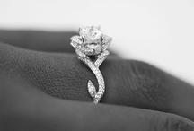 The ring / by Kim Goodman