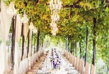 Wedding Along the Wine Road / Weddings on the Wine Road. Ideas. DIY. Venues. Happy Moments