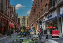 Bethesda, MD / Want to know what it is like in Bethesda, MD? Experience it here.