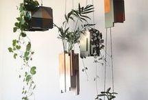plants - gardening