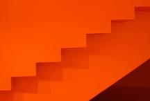Orange / by Dominik Bryant