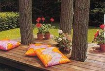 Garden <3 / by Momina Hassan