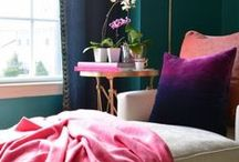 PROJECT // colorful adams morgan ladyplace / by Caitlin Brown Interiors