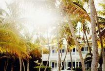 Floridian love...