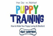 Dog Books by Amy Morford / Dog and puppy training, dog behavior, dog eldercare, pet numerology, dog quotes and more.