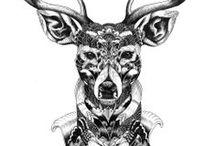 Deer / by Cindy Micheline-Paulet