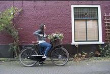 Transport fietsen / Collectie van verschillende transportfietsen