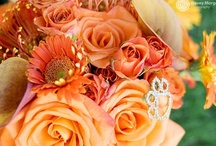 Clemson Wedding / by Clemson Girl